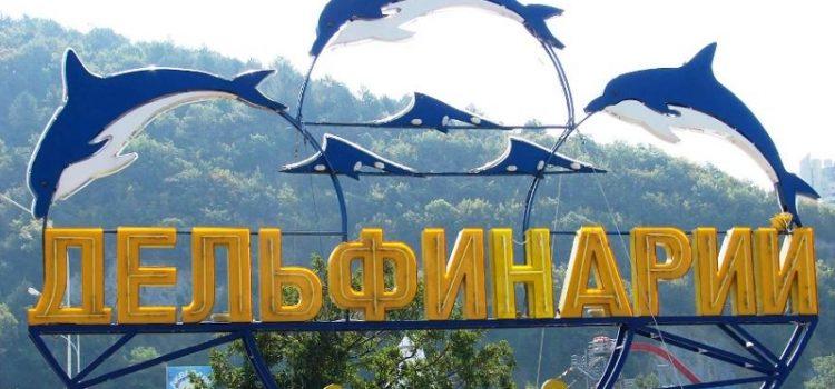Дельфинарий «АКВА-МИР» в Небуге